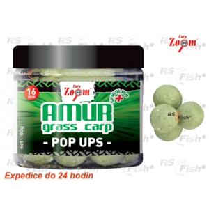 Carp Zoom® Boilies Carp Zoom Amur POP - Up