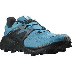 Pánské boty Salomon Wildcross 2 Gore-Tex Velikost bot (EU): 42 / Barva: modrá