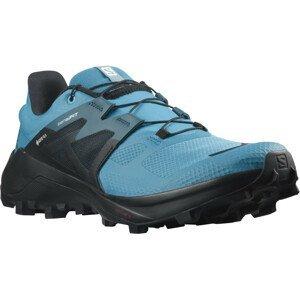 Pánské boty Salomon Wildcross 2 Gore-Tex Velikost bot (EU): 46 / Barva: modrá