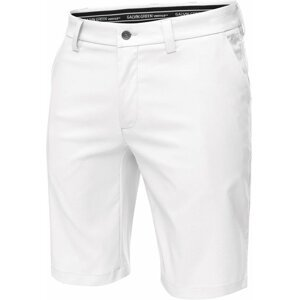 Galvin Green Paolo Ventil8+ Mens Shorts White 40