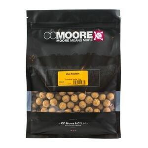 CC Moore Boilie Live system