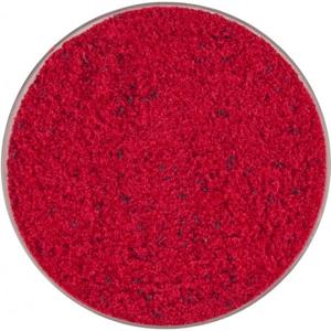 Krmítková Směs MS Range Pastoncino 1kg Červená