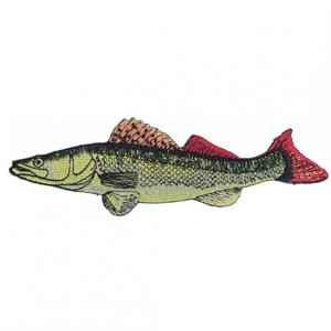 Nášivka JSA Fish Candát Délka 13cm