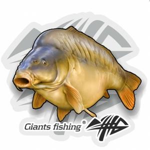Nálepka Giants Fishing Velká Kapr Lysec
