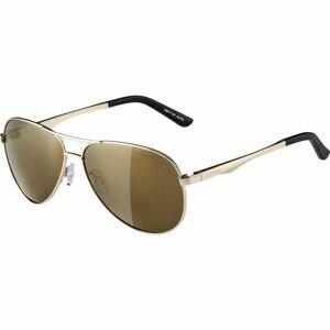 Alpina Sports A 107 žlutá NS - Unisex sluneční brýle